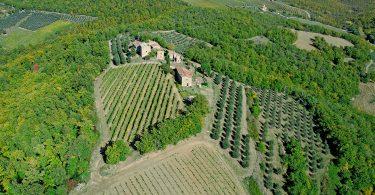 © Podere Capaccia - Radda in Chianti (Siena)