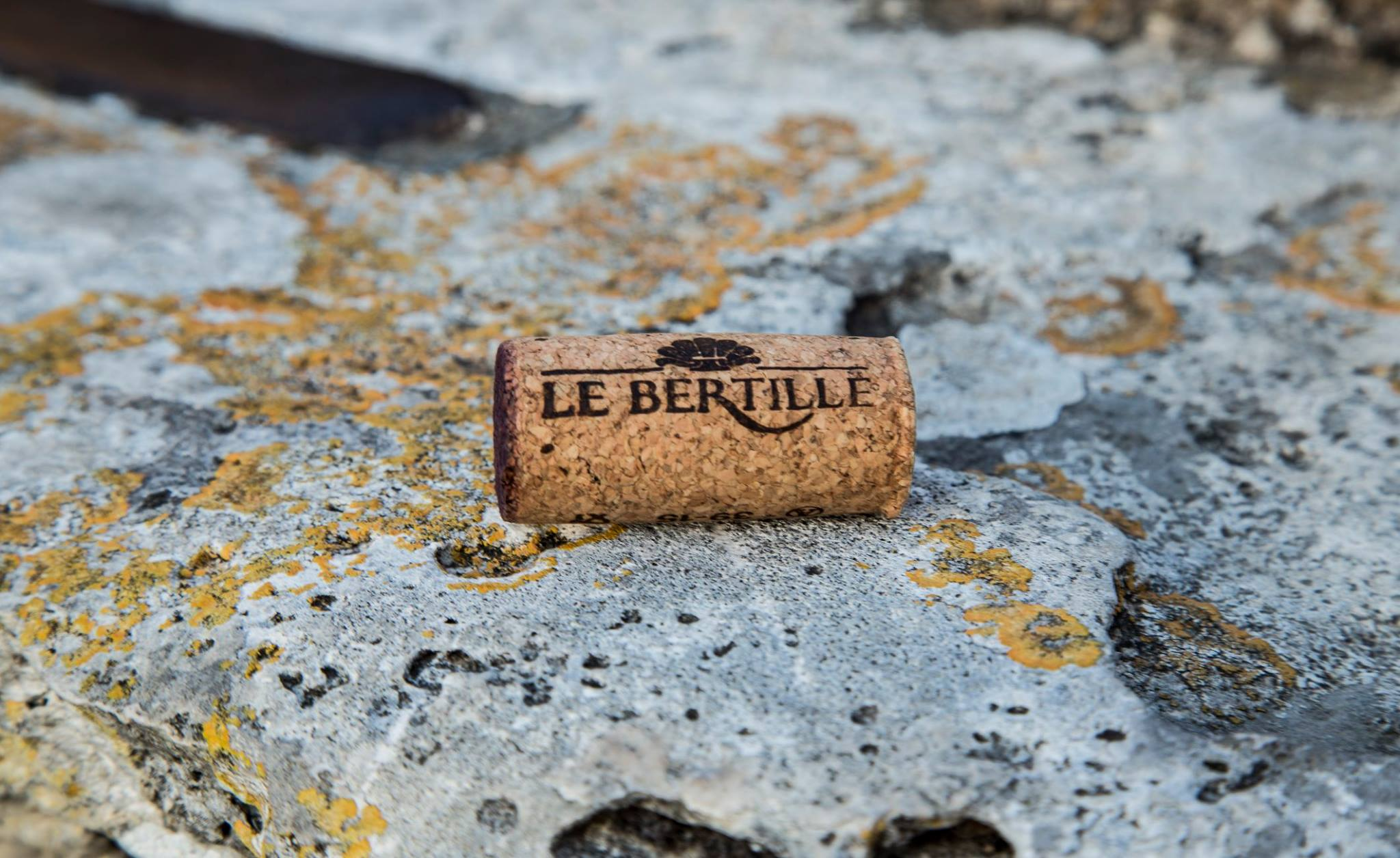 © Le Bertille