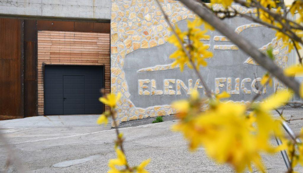 Elena Fucci - Azienda Agricola Elena Fucci