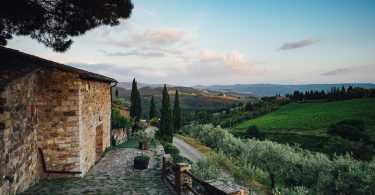 Chianti Classico 2017 - Vecchie Terre di Montefili