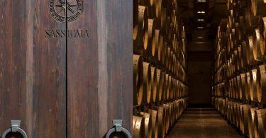 Guida (Di)Vino - Tenuta San Guido - Toscana