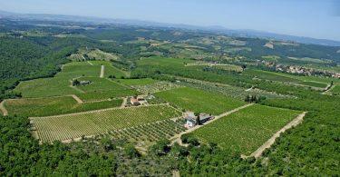 Vin Santo del Chianti Classico Riserva 2010 - I Sodi
