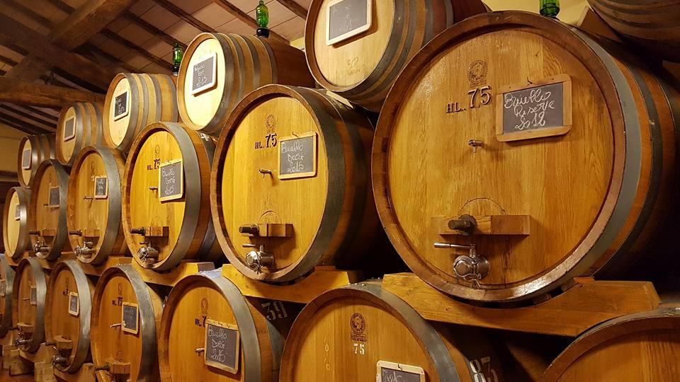 Rosso di Montalcino 2018 - Sesti