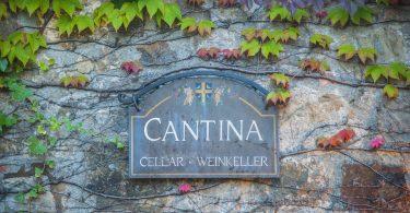 Brunello di Montalcino Vigna del Fiore 2015 - Fattoria dei Barbi