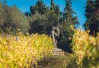 Chianti Classico Riserva 2015 - Capannelle