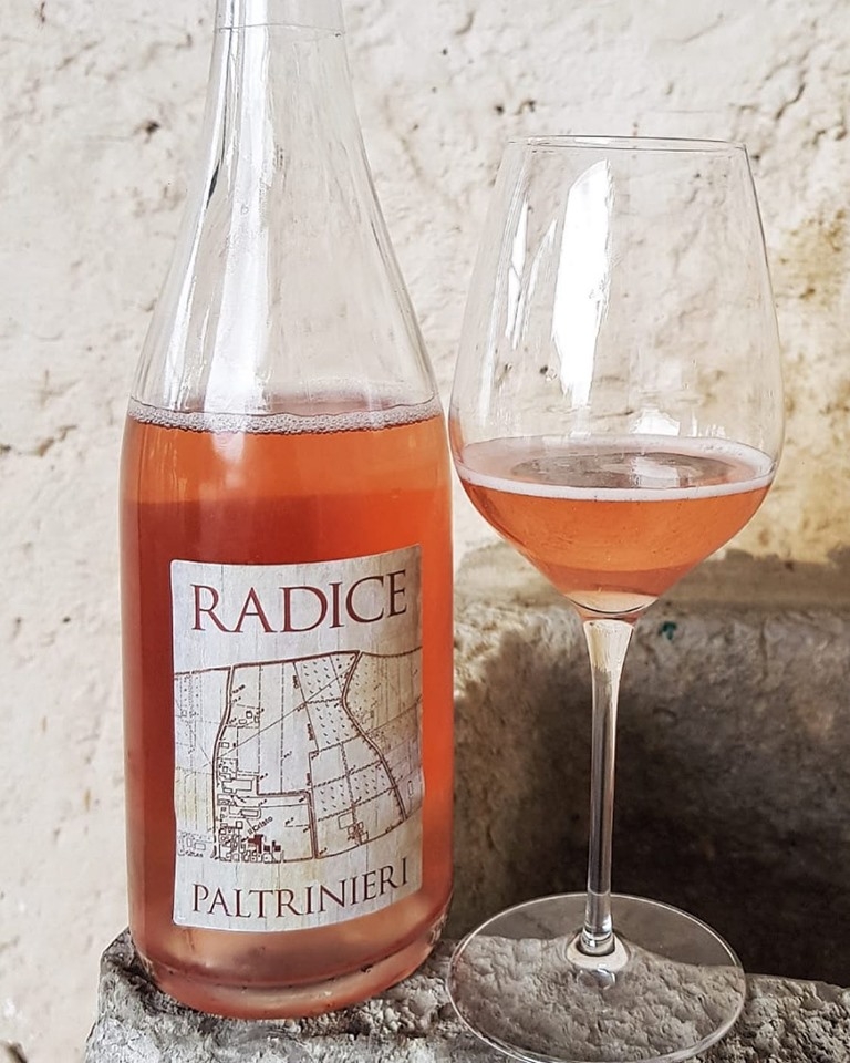 Radice 2018 - Cantina Paltrinieri