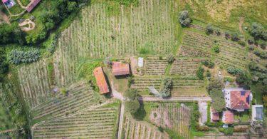 Villa Linda 2018 - La Pietra del Focolare