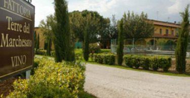 Tarabuso 2015 - Terre del Marchesato